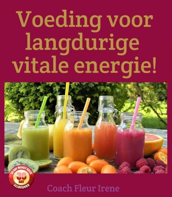 Ebook Voeding voor langdurige vitale energie!